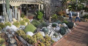 Seeing these beautiful Southern California gardens won't break your budget