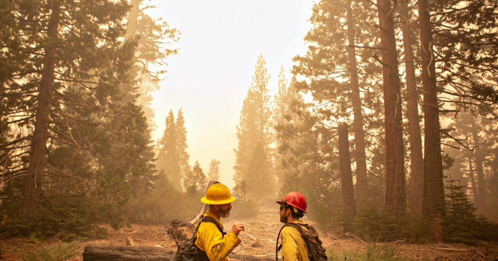 California national forests closure impact on Labor Day plans